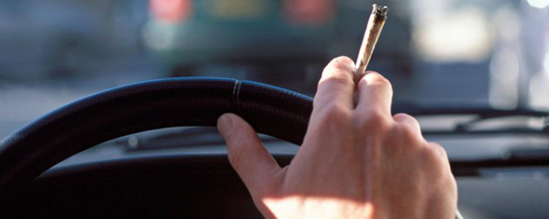 Guida sotto effetto della cannabis, fra tossicologia e giurisprudenza