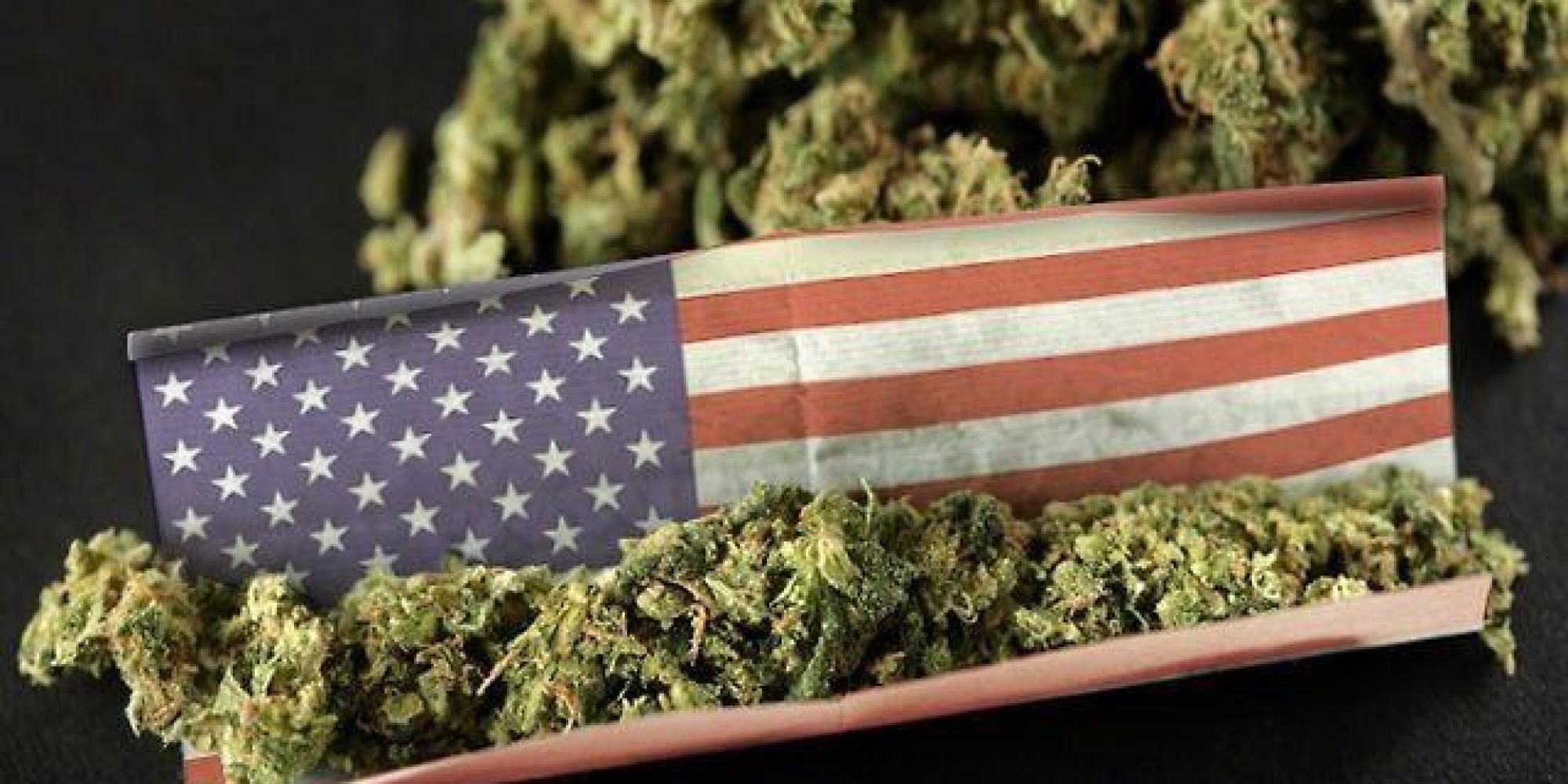 Legalizzare la Cannabis significa creare posti di lavoro
