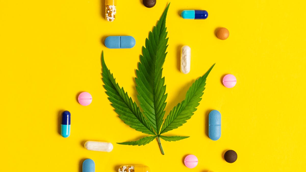 Cannabis terapeutica: benefici per chi è stressato