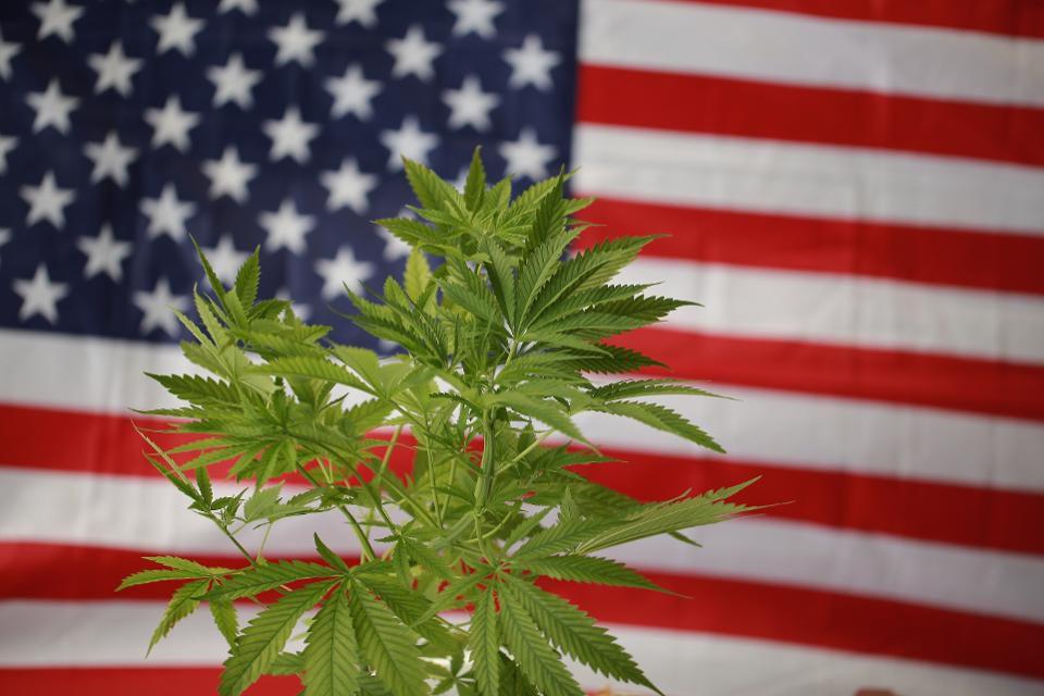 Il racconto di due paesi, arresti su base etnica nell'era della riforma della marijuana