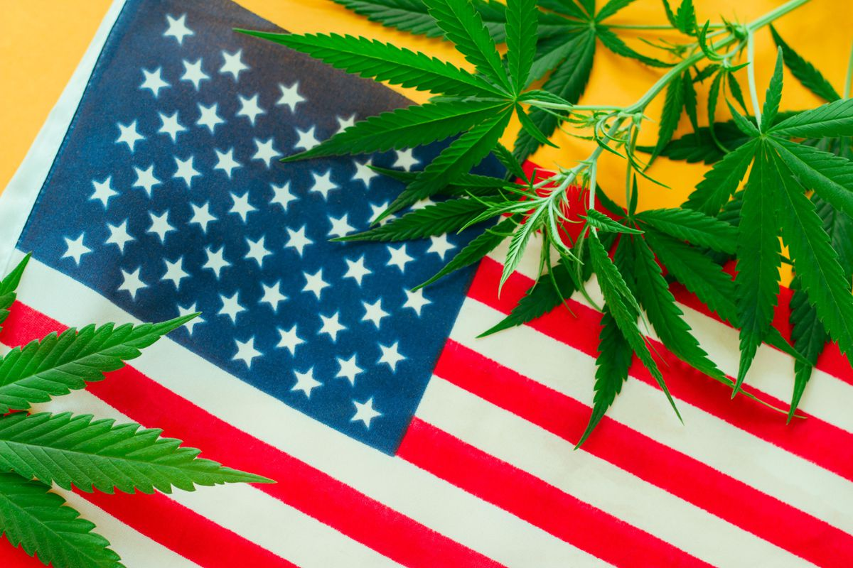 USA: cannabis in risalita tra politica e business
