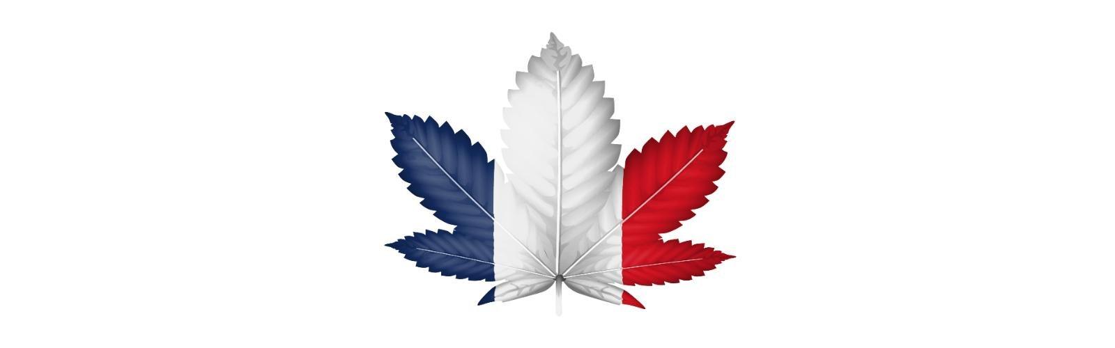 Francia, 200 euro di multa a chi fa uso di cannabis