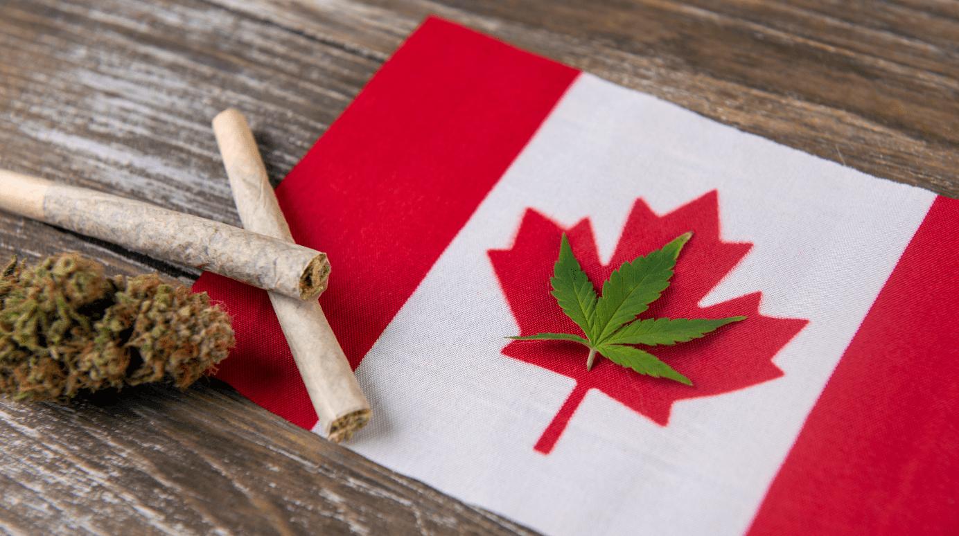 Canada: il successo della legalizzazione della cannabis