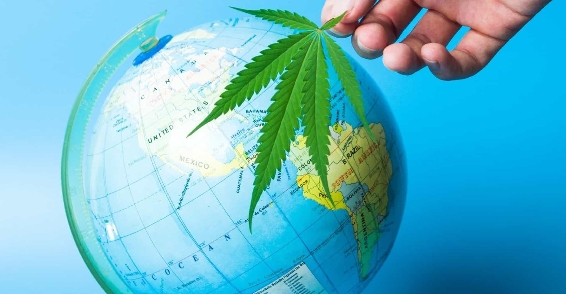 Coltivazione di cannabis: il mondo sta cambiando…e l'Italia?