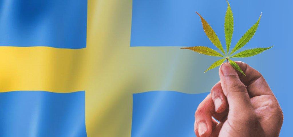 Legalizzazione cannabis. Lo stato dell'arte –  SVEZIA –