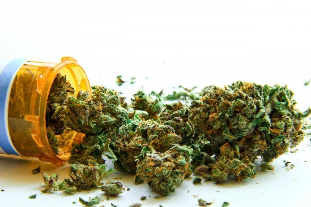 USA - Legalizzazione cannabis medica. Corte Suprema Nebraska nega il voto a novembre
