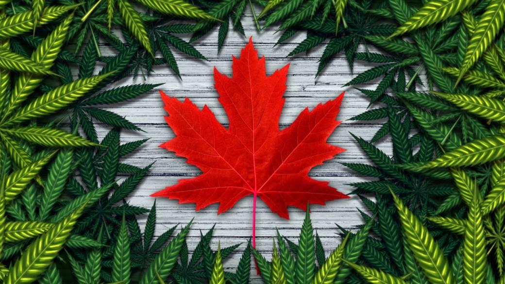 Cannabis legale. Canada. Per la prima volta le vendite legali hanno superato quelle illegali