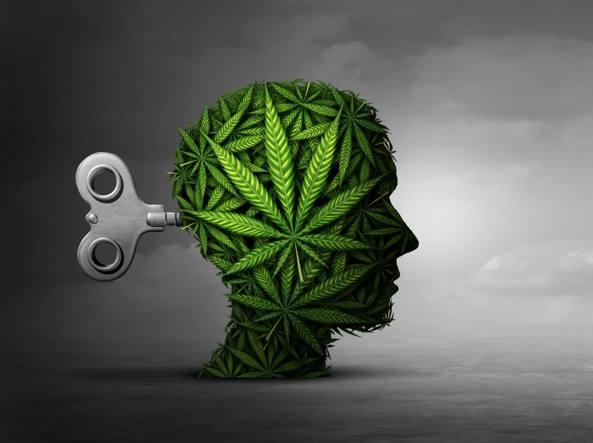 Cannabis e depressione