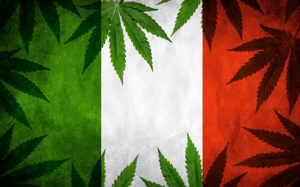 Questo sarebbe il momento giusto per legalizzare la cannabis in Italia