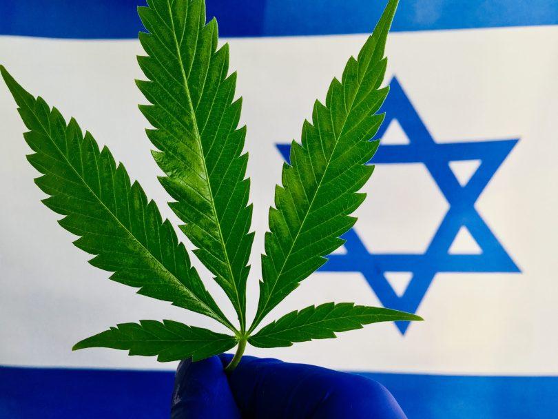 """A Tel Aviv """"piove"""" cannabis dal cielo. L'iniziativa di un gruppo di attivisti per la legalizzazione"""